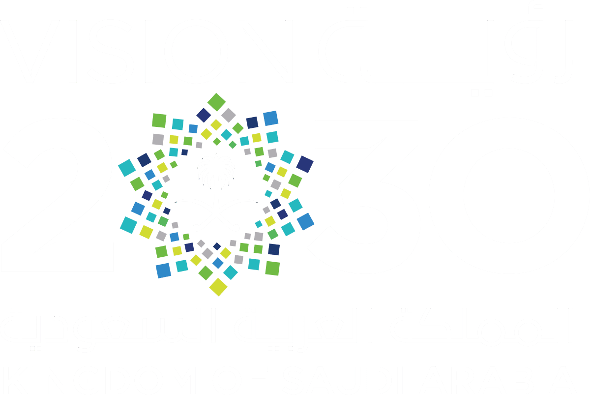 Saudi Vision 2030 White Logo Transparent